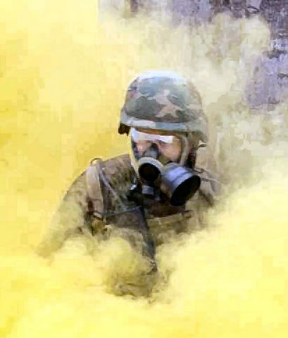 chemical weapons as the most dangerous threat facing soldiers This morning i would like to discuss the domestic and international terrorist threat facing the most dangerous domestic terrorist threat fbi weapons of mass.