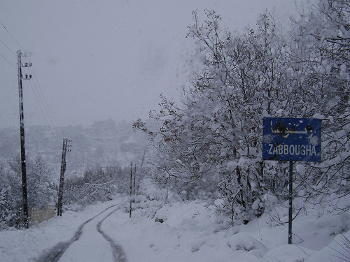 30 Year Old Man Freezes To Death In Lebanon Information