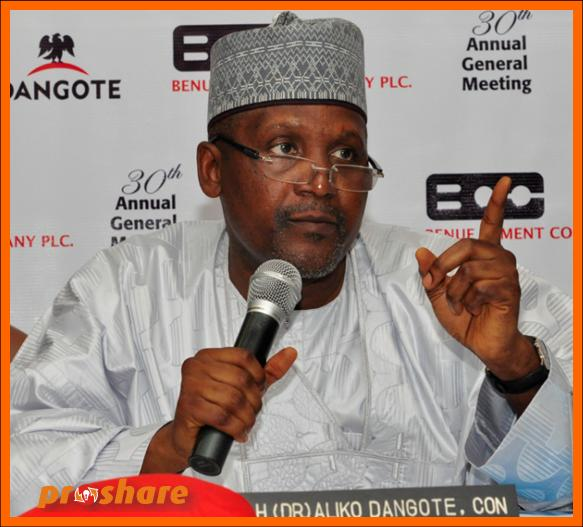 dangote first on list of africa 39 s top gainers in 2013. Black Bedroom Furniture Sets. Home Design Ideas