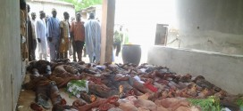 Troops Kill 73 Insurgents Disguised As Herdsmen In Borno