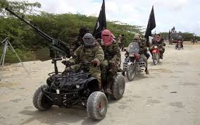 Boko Haram: The World Should Understand That We Are Fighting A Peculiar War — Olukolade