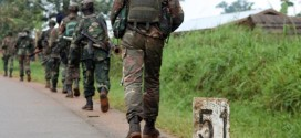 Up to 80 People Killed by Suspected Ugandan Rebels in Congo