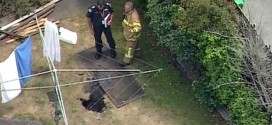 Sinkhole Swallows Australian Woman In Back Yard