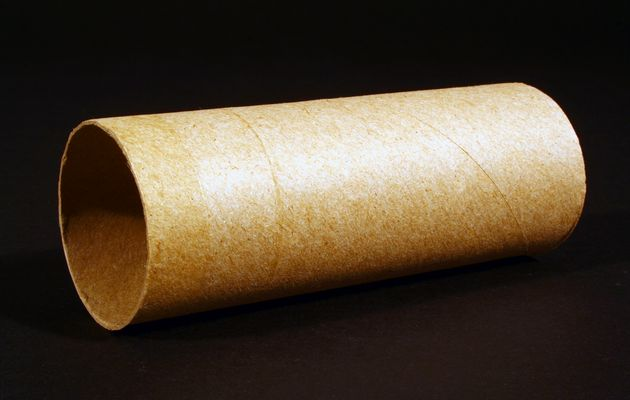 Bizarre mother of five addicted to eating toilet paper for Things to do with empty toilet paper rolls