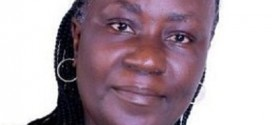 Presidential Election: All Nigerians Will Be Given Equal Opportunity If I Win – Sonaiya