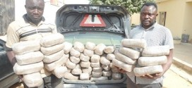 NDLEA Arrests Two Ex-cons For Smuggling 66Kilos Of Cannabis