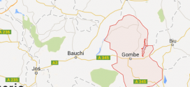 8 suspected Boko Haram gunmen killed in Gombe, Bauchi