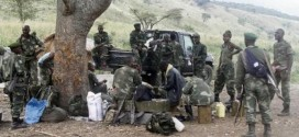 Congo Military Kill Rebels, Gains Ground In Drive To Crush Insurgency