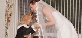 British Woman Weds Dog In Expensive 'Romantic' Wedding Ceremony – After Marriage To Man Failed