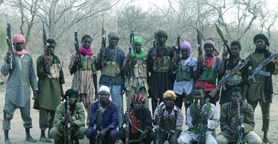 'Four LGAs, Other Areas Still Under Boko Haram Control'