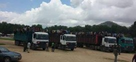 Nigerians In Cameroon Deported In Cattle Trucks (Photo)