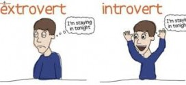 There Are 4 Types Of Introverts: Which One Are YOU?