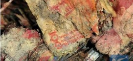 Farmer hides 100,000 yuan underground, finds it rotten 4 years later