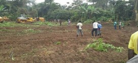 Work On Ekiti Airport Project Put On Hold After Oil Palm Farmer Dies Of Shock