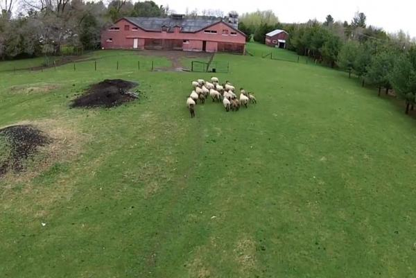 drone for barn
