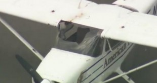 Small-plane-makes-emergency-landing-after-bird-crashes-through-windshield