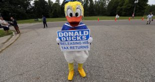 donald duck trump