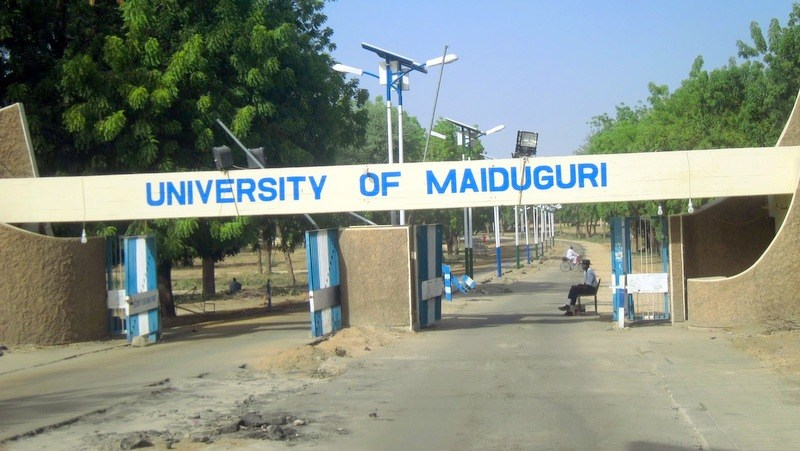 UNIMAID lecturers in Boko Haram captivity for 69 days