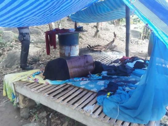 Family of 4 slaughtered at rubber plantation in Thailand (Graphic photos)