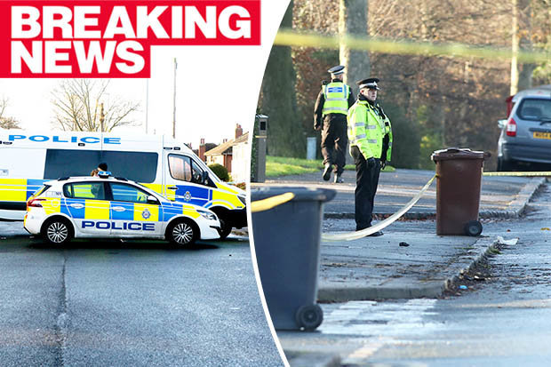 Five killed, including three children, after stolen vehicle crashes in Leeds