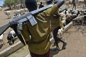 Herdsmen Kill Two Priests, 14 Worshipers in Benue