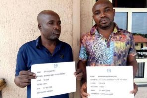 419 'babalawo' collect N31m from man looking for money medicine