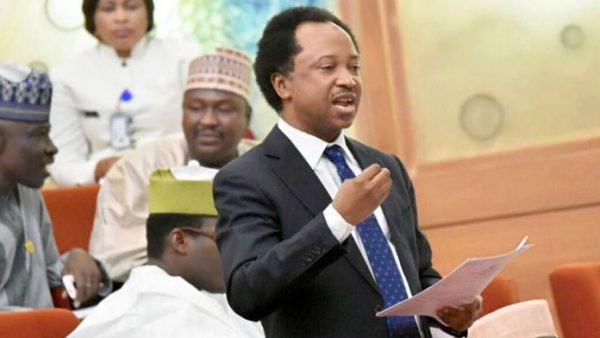 Image result for Shehu Sani reveals only person with details of June 12 struggles