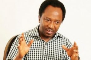 Killings and kidnappings in Zamfara & Birnin Gwari axis have reached a hopeless level  – Shehu  Sani