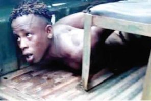 Man kills mother after impregnating his cousin