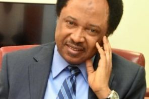 what will you gain by 'cutting 3k from 30k' – Shehu Sani on new minimun wage