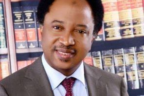 Shehu Sani's name omitted from APC List of Kaduna state senatorial candidates