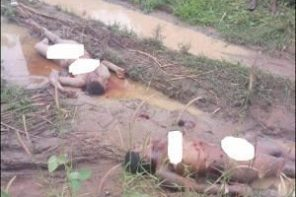 Two ladies found dead with organs harvested in Anambra