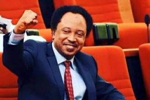 Shehu Sani hails Tambuwal for suspending campaign in honour of 30 people murdered by armed bandits in his state