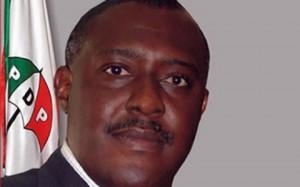 PDP NATIONAL PUBLICITY SECRETARY, OLISA METUH