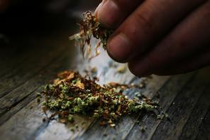 marijuana_296