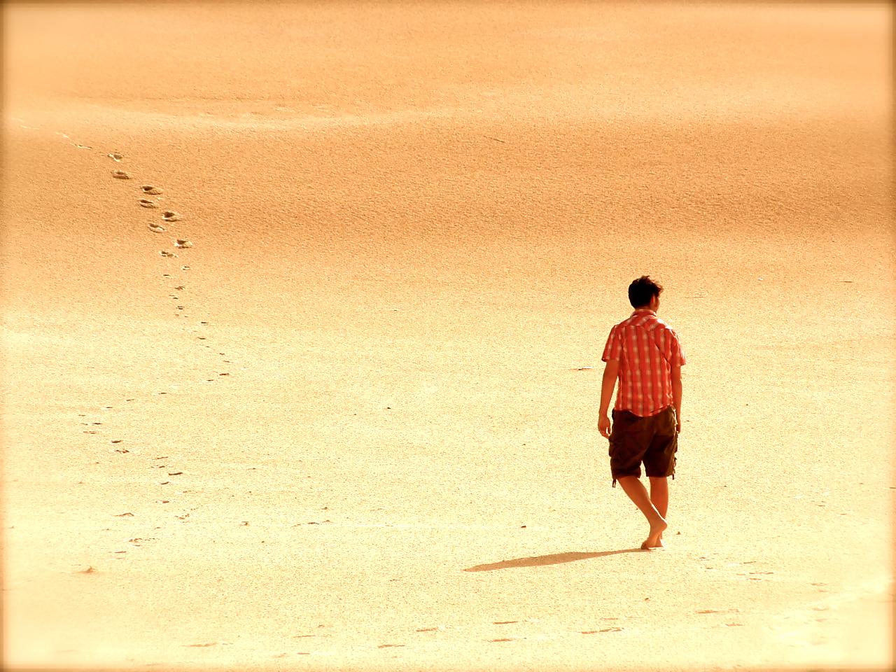 A walk In The desert Book scott Foresman