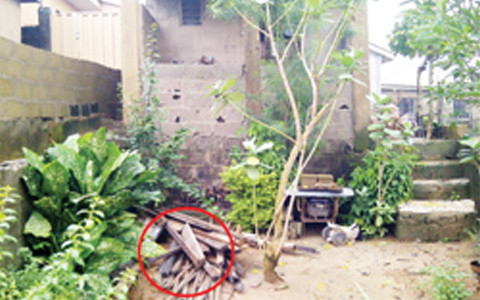 Photo Credits (PUNCH): AROGUNDADE'S HOUSE WITH HIS SON'S GRAVE ENCIRCLED
