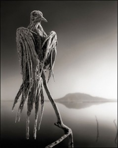 Lake-Natron-550x688