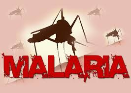 malaria4357985894
