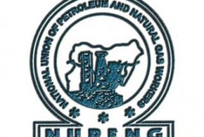 Image result for nupeng