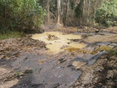 oil spill_shell_