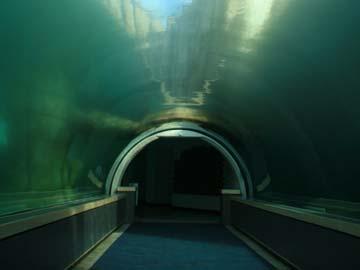 China To Build World S Longest Underwater Tunnel