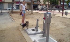 Dog-toilet-in-El-Vendrell-550x330