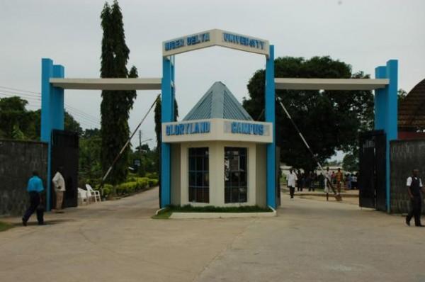 niger_delta_universityndu_logo