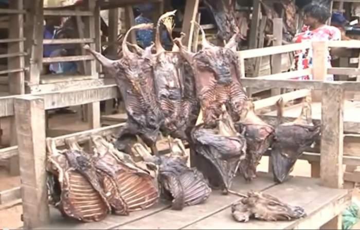 nigeria-bush-meat-selling