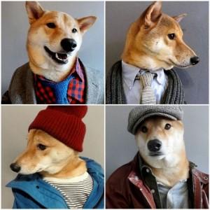 menswear-dog2-550x550
