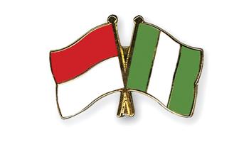 Flag-Pins-Indonesia-Nigeria