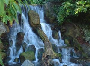 assop-falls-21