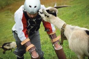 Goat-guy-459169