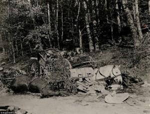 WW 2 15